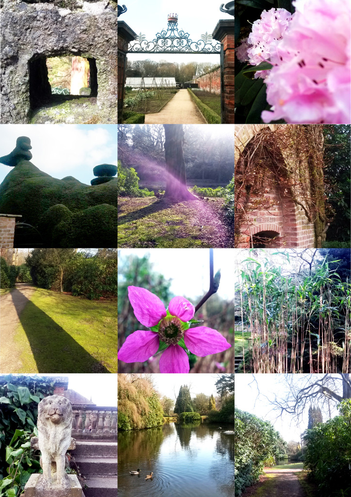 Moodboard_Enchanted garden