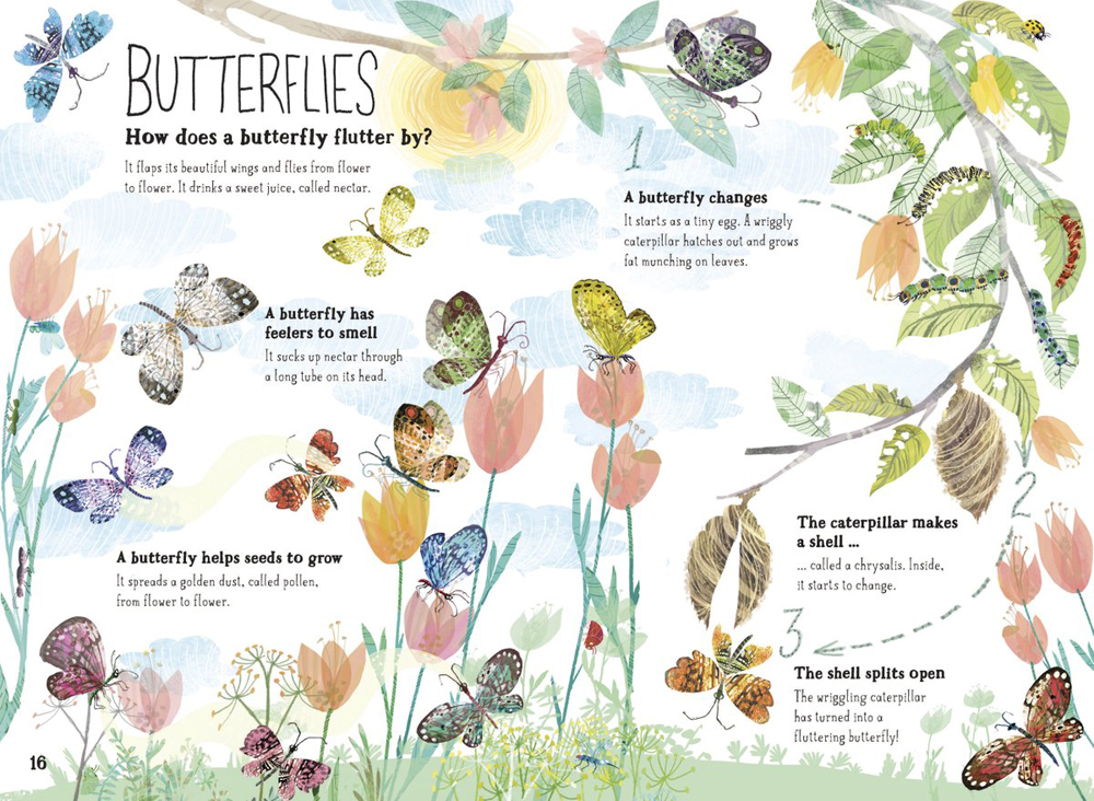 beautifully-illustrated-book-about-bugs-emmajayne-designs